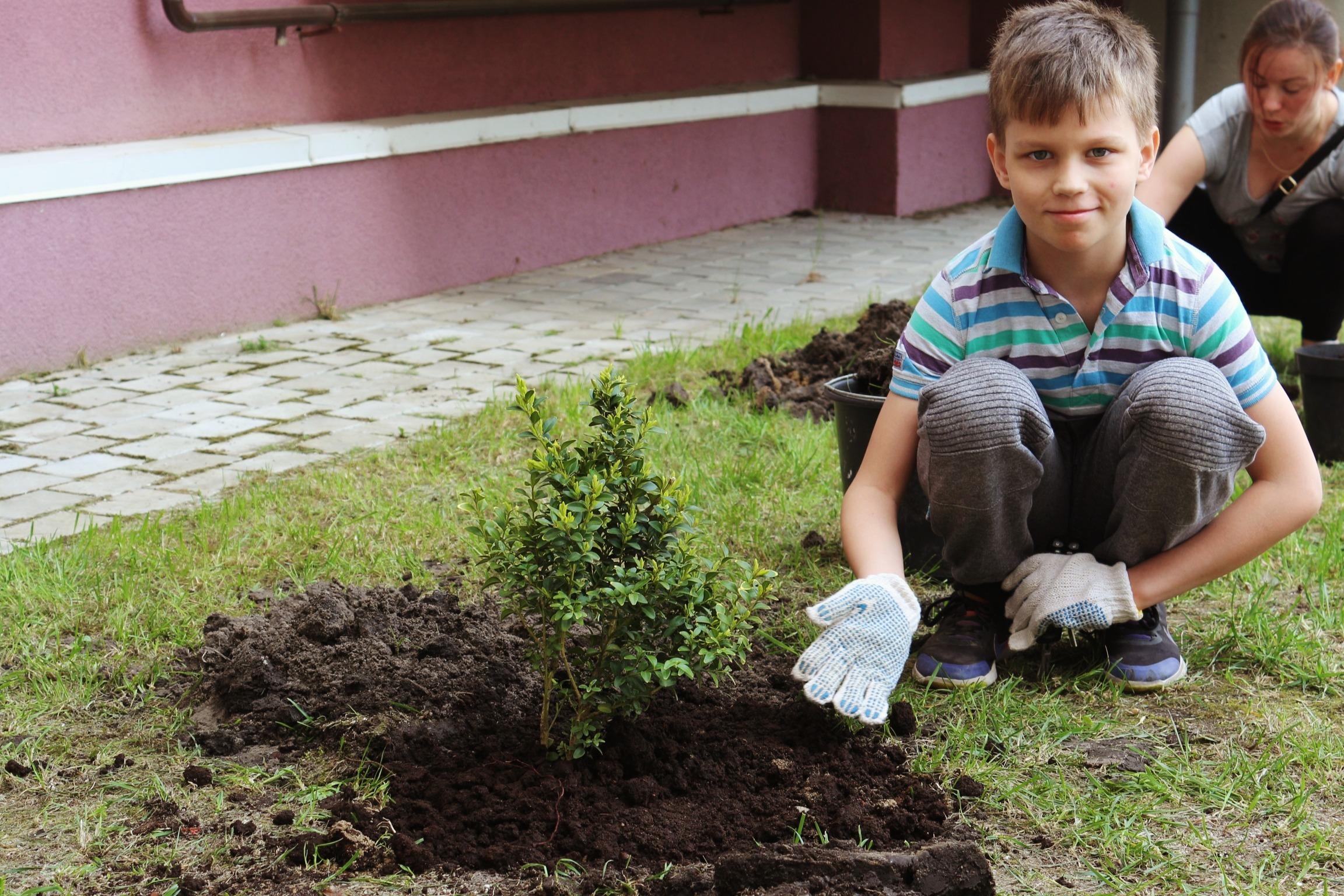"""Завершилась социальная акция """"Посади дерево в ЖК """"Восток"""""""